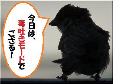 dokuスズメ4.jpg